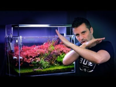 лампы для аквариума как выбрать